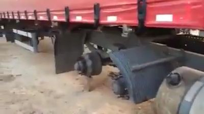 Looks like someone stole all wheels from the truck (Video)